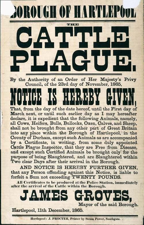 1865 Cattle Plague.jpg